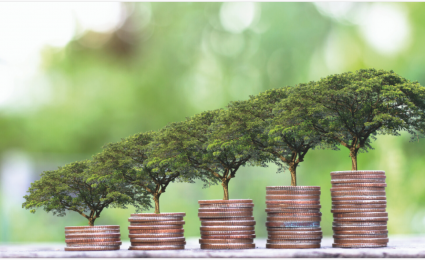 The Role of Impact Investing in a Time of Crisis